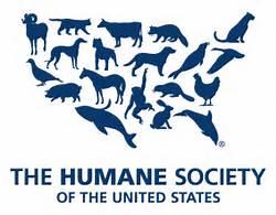 Elite Body Bronzing Donates To Humane society
