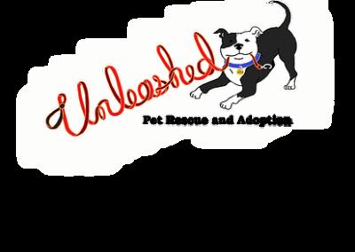 Vote Unleashed Pet Rescue